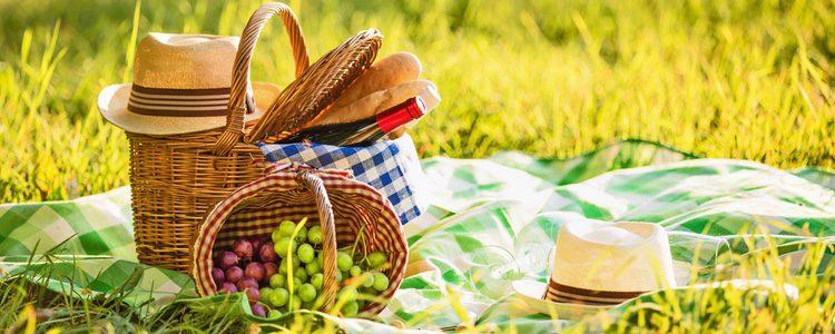 Ir de picnic es unos de los mejores planes para este verano